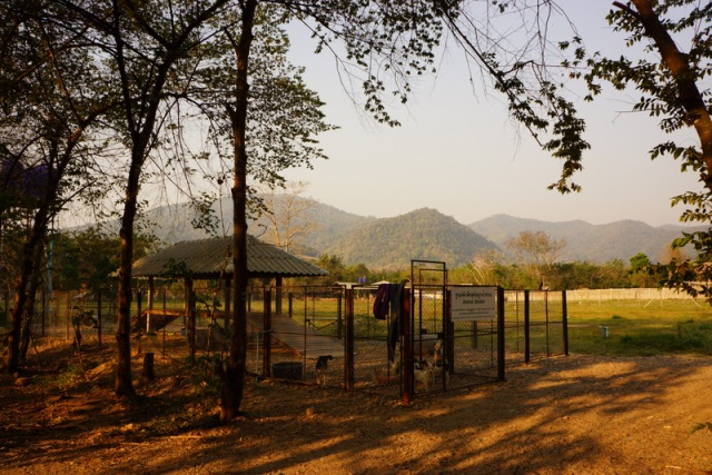 The view of a kennel and the lush mountains in the background.