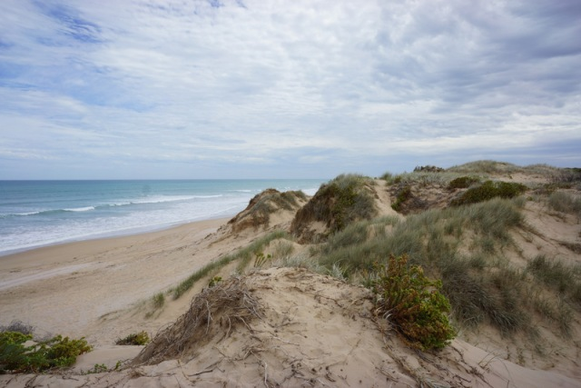 Dunes at the Coorong