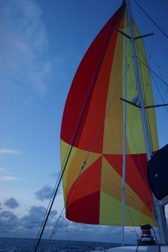 Spinnaker billowing off the front of Sophie, our sailing vessel during the crossing. What an amazing sight!