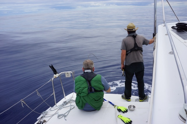The fight is on! Dan (in green) spent five hours fighting a large striped marlin, which he eventually caught. You can see photos on Jenna/Jamie's blog www.svsophie.com. I'll keep the pics on this blog vegan friendly  :) .