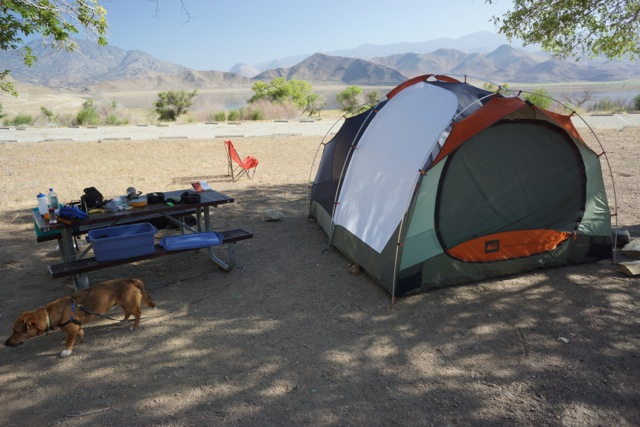 Don't let the picture deceive you, this is not a good campsite! It was hot and dusty in the day, with plenty of road noise. Only two sites were used when we were there (out of at least a hundred!).