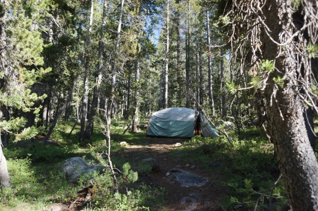Our tent was nestled back in some tall trees.