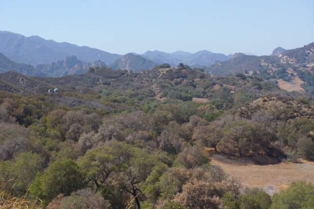 Malibu Creek State Park is land that was once owned by MGM - the TV/Movie company. Many movies were filmed here, including the original Planet of the Apes. It was also the set location for the M.A.S.H. tv show!