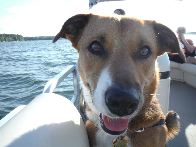 Duke liked the boat too.