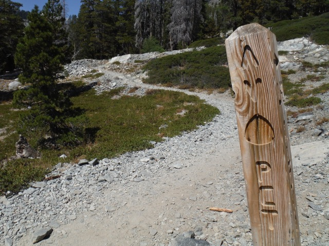 On a section of the PCT.