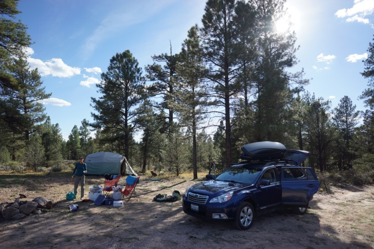 The Grand Canyon campground was full, so we snagged a 100% free camping spot in the national forest about 5 miles away. There were no toilets (you dig a hole in the ground) and no water (we always travel with 3-5 gallons of water with us), but it was pretty quiet and we had plenty of space.