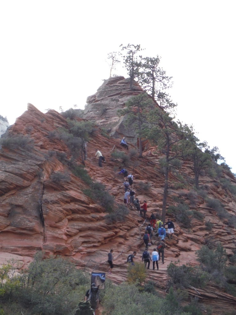 Crazy crown of people waiting to go up the final mile of Angels Landing....some crazy parents went up there with 5-7 year old kids.