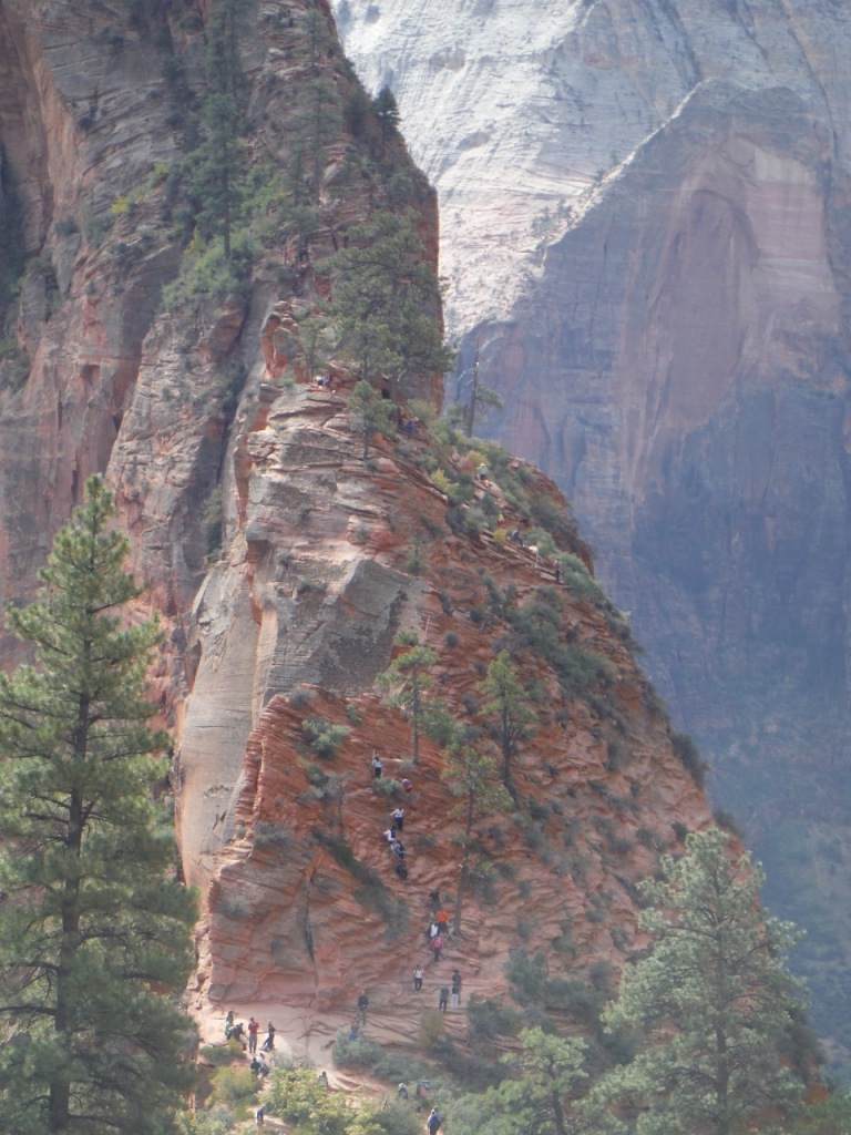 Look closely to see the line of people waiting to go up the final half mile of Angel's Landing.