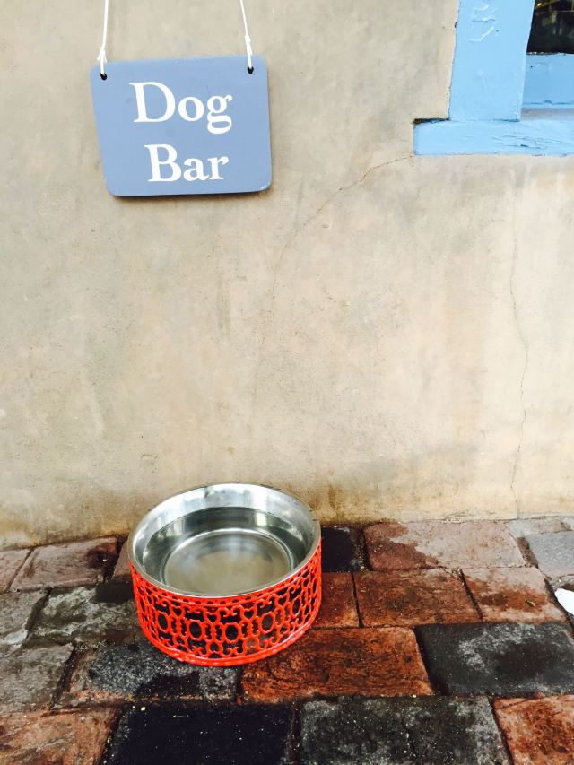 Santa Fe is very dog friendly!