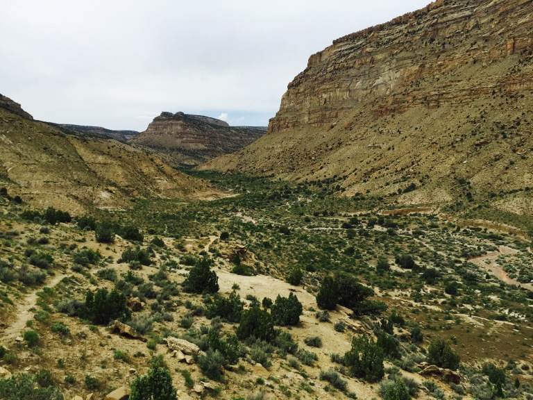 Book Cliffs, BLM land with wild horses.